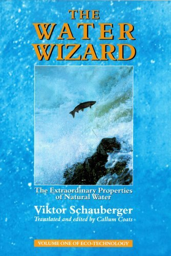 The Water Wizard: The Extraordinary Properties of Natural Water (Schauberger's Eco-technology) by Viktor Schauberger (1999-07-01)