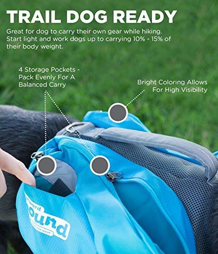 Outward Hound DayPak for Dog, Medium, Blue 4