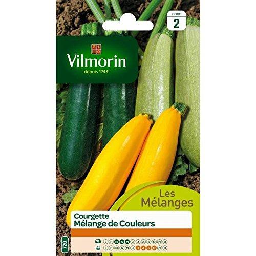 VILMORIN COURGETTE MÉLANGE DE COULEURS