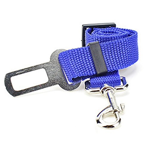 Perro Cinturón de Seguridad de Coche