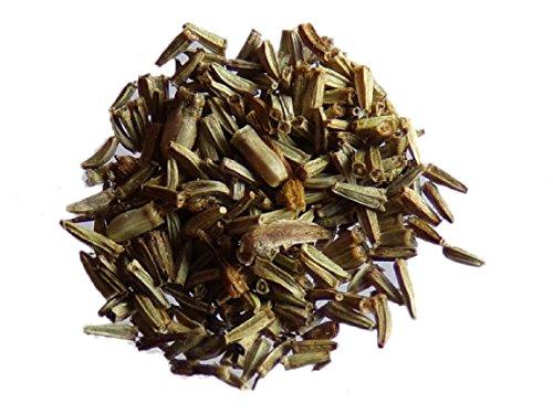 Tanaisie - 1000 graines x 2 sachets - Tanacetum Vulgare - Tansy - (Engrais vert - Green manure) - SEM05