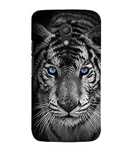 EPICCASE Eye of the Tiger Mobile Back Case Cover For Moto G 2nd Gen (Designer Case)