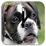 Stil.Zeit Deutscher Boxer Welpe im Gras, Wanduhr Quadratisch Durchmesser 28cm mit schwarzen eckigen Zeigern und Ziffernblatt