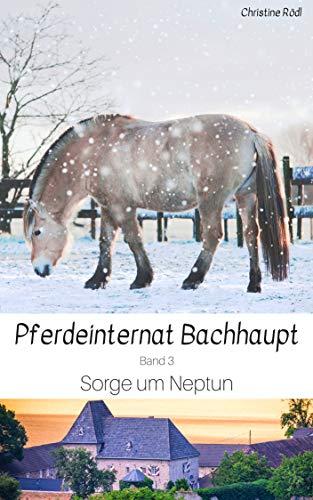 Sorge um Neptun (Pferdeinternat Bachhaupt 3)