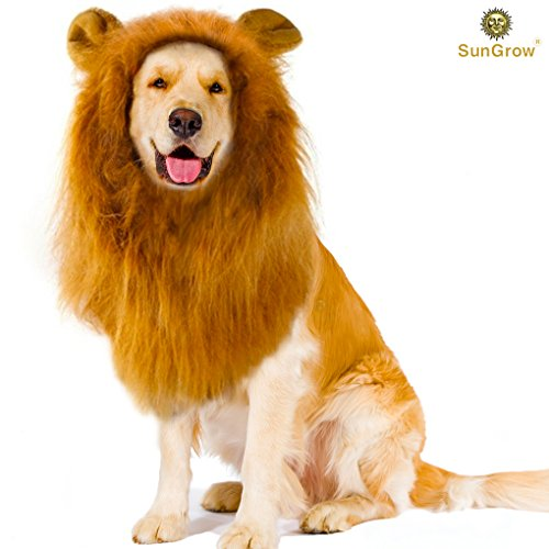 SunGrow Lion Mane Kostüm mit Ohren, für Hunde und Katzen, um Ihre Haustiere mit-Motiv mit Mane Stollen für Parteien, Halloween-Kostüm (Halloween-kostüm Yoda Hund)