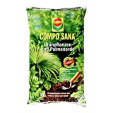 COMPO SANA Grünpflanzen- und Palmenerde mit 8 Wochen Dünger für alle Zimmer- und Balkonpflanzen sowie Palmen und Farne, Kultursubstrat, 10 Liter