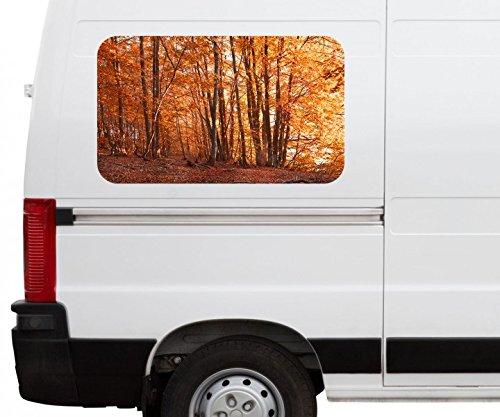 Autoaufkleber Wald Herbst Birke bunt Blätter Landschaft Car Wohnmobil Auto tuning Digital Druck Fenster Sticker LKW Bild Aufkleber 21B725, Größe 3D sticker:ca. 45cmx27cm (Birke Landschaft Fenster)