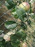 Nutley 's Küche Gärten fle09bn10gewebt 10x 8m Vogel Net–Grün