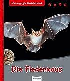 Die Fledermaus (Meine große Tierbibliothek) - Dr. Jens Poschadel