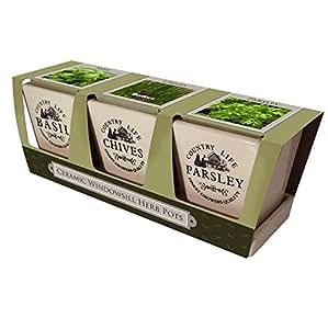 Taylors ceramic windowsill herb pots compost basil - Windowsill herb pots ...