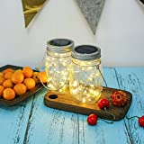 NEWYANG Solar Mason Jar Lights - Led Water-Proof Outdoor Fairy Lights,Hanging Lights for Garden, Courtyard, Wedding, Party, Bar, Cafe,Christmas,Wall,Table,Tree,Fence, etc. (Warm)