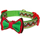 Blueberry Pet Halsbänder für Hunde 2cm M Weihnachts-