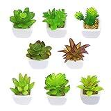Outuxed Set mit 8 künstlichen Sukkulenten Topfpflanzen Mini-Suchkulenten in weißen Würfel-Form für Zuhause und Büro