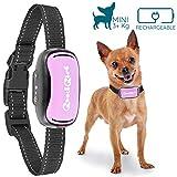 Good Boy Antibell Vibrationshalsband für Kleine Hunde - Wiederaufladbar und Wasserdicht