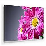 Blumen Bild D490, 1 Teil 90x60cm Leinwand auf Holzrahmen aufgespannt, FineArt Print, UV-stabil und wasserfest, Kunstdruck für Büro oder Wohnzimmer, Deko Bild