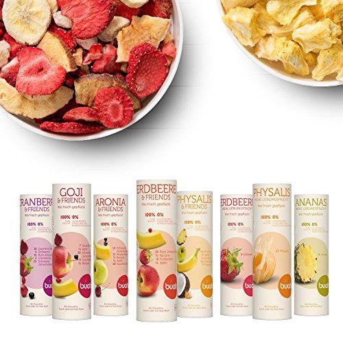 rüchte & Superfoods für leckere Früchte-Smoothies und gesunde Snacks zwischendurch | BUAH® SMOOTHIE-PROBIER-KORB | 100% Frucht | 0% Zusätze | Healthy Snacks (16g-32g) (Gesunde Halloween Snacks)