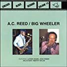 Chicago Blues Session 14 by Reed (2000-03-22)