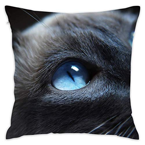 Cat Pillowcase - Zippered Pillow Case Cover, Pillow Protector, Throw Pillow Cover - Standard Size 18x18 Inch, Double-Sided Print Pillowcase Covers ()