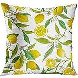 Starogs Funda de Almohada para cojín con diseño Floral de Brasil y Hojas de limón, Decorativa, Decorativa, 18 x 18 Pulgadas, Cuadrada, Color Verde