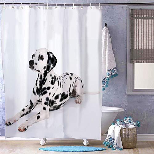 """FabricMCC Cortina de Ducha, Cortina de baño de 71"""" x 71"""" con diseño de Perro saltarín, dálmata, decoración de baño Surreal"""