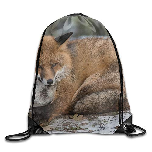 HLKPE Brown Grey Fox In The Snow Drawstring Bag for Traveling Or Shopping Casual Daypacks School Bags - Tail Snow Fox