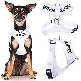 Deaf Hund (Hund Hat Limited/keine Gehör) weiß Farbe Kodiert non-pull Vorder- und Rückseite D-Ring gepolstert und wasserdicht Weste Hundegeschirr verhindert Unfälle durch vorwarnen anderer Hunde in Advance (extra kleine Hals bis zu 26cm Brust 33-48cm)
