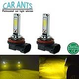 Car Ants Extrem Super helle COB Chips H1,H3,H4,H7,H8/H9/H11,H10,H16,880,881,9005(HB3), 9006(HB4), 30W, 1400lm, LED Nebelscheinwerfer Glühbirne, Plug-n-Play, Goldgelbe Farbe (H8)(2 pro Packung)