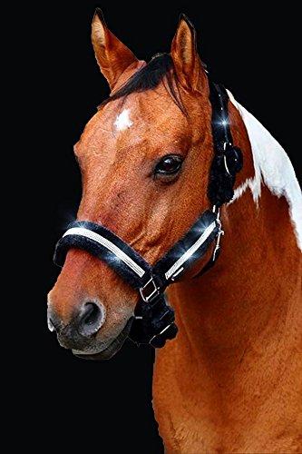Meister Comfort Headcollar for Nobility, Travel, Stable Horse Headcollar Halter 2