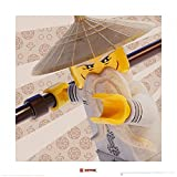 1art1 107483 The Lego Ninjago Movie - Sensei Wu Poster Kunstdruck 40 x 40 cm