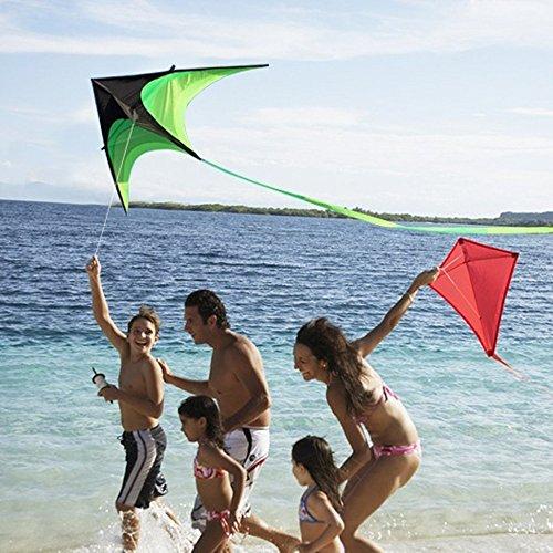 Pottoa Kleinkinder Spielzeug Lenkdrachen mit 30 Meter Line Board Dreieck Drachen im Grün Schwarzer Drachen Bildung Spielzeug 3 Jahre Puzzle Pädagogisches Spielzeug