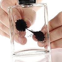 Ailiebhaus Ferrofluid in der Flasche magnetische zylindrische Glasflasche Display Spielzeug