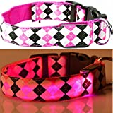 LEUCHTENDES Hunde-Halsband, Größe: M (40-48cm / 2,5cm breit), PINK KARO-Design, mit Klickverschluß. LED's leuchten und blinken im Dunkeln.