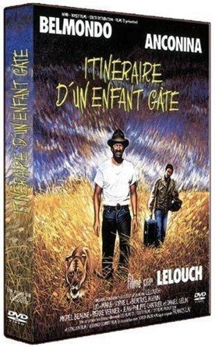 Bild von Itineraire d'un enfant gaté [FR Import]