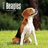 Beagles 2018 Mini Wall Calendar