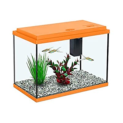 All Pond Solutions Aquatlantis Funny Fish 35 Aquarium Fish Tank 15, Small/ Large