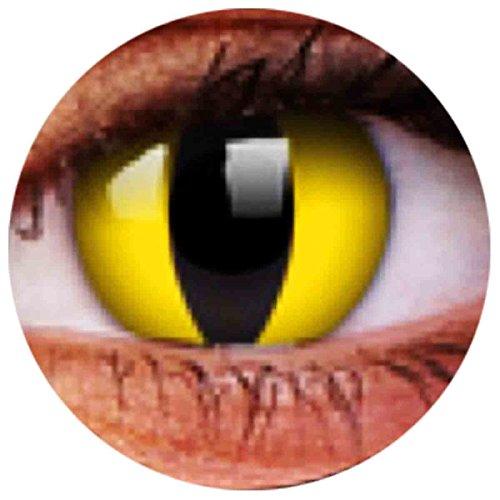 Farbige Kontaktlinsen Linsen Ohne Stärke Katzenaugen Katze Cat Eye Cateye Yellow Gelb 0 Dpt Halloween Karneval Party (Cute Halloween-kostüm Lion)