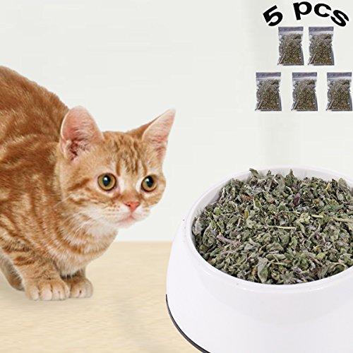 PAWZ Road Katzenminze Katzensnack Katzenspielzeug Natürliche Gesundheit Haustier Snacks 10g 5 PCS