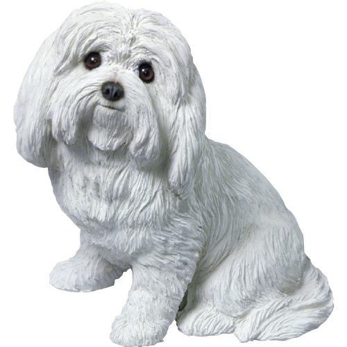 Sandicast Original Größe Malteser Skulptur, white/off-white, Original Size (Malteser Hund Figur)