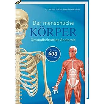 PDF] Der menschliche Körper: Gesundheitsatlas Anatomie KOSTENLOS ...