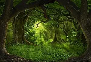 Yongfoto 3x2m Vinyl Foto Hintergrund Tiefe Tropische Kamera