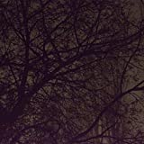 Notturno in La minore - Eterno Ritorno nell'Amore Assoluto