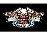 H&D Harley Davidson Fahne 150x90 cm