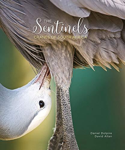 The Sentinels: Cranes of South Africa par Daniel Dolpire