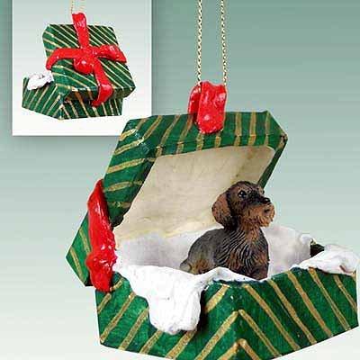 Dachshund verde de la caja de regalo - alambre pelo ornamento del perro