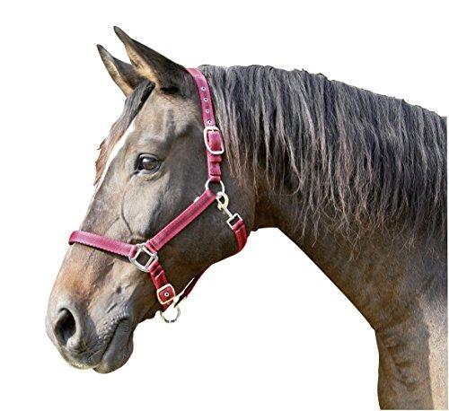 Kerbl Halfter Mustang 2-Fach verstellbar, Rot/Schwarz, 3, 321971