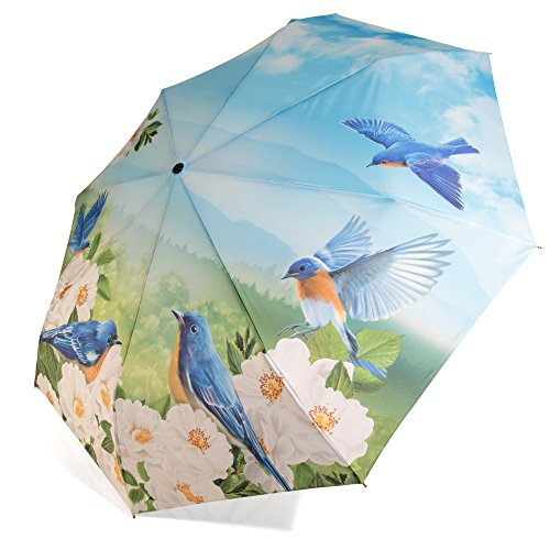 Preisvergleich Produktbild Regenschirm Automatik Taschenschirm Naturmotiv Kirschblüten und Finken - Rosemarie SCHULZ Regenschirme für Damen