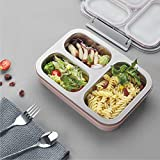 STAR WORK Tedemei Stainless Steel Lunch Box with 3 Compartments 1.2ltrs, Tiffin Box