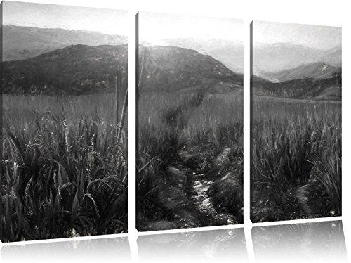 paddy-plantation-effet-de-charbon-de-3-pices-dimage-asie-de-limage-de-toile-120x80-sur-toile-xxl-nor