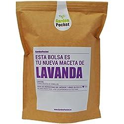 Kit de cultivo LAVANDA