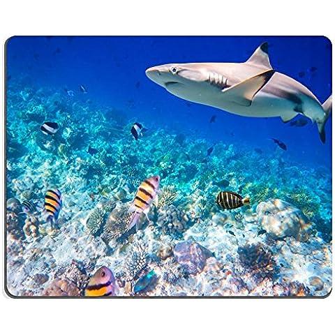 MSD-Tappetino per mouse in gomma naturale, gioco foto ID: 38673987 reef con una varietà di rigida e morbida e coralli squalo sullo sfondo: Squali coralli di fuoco non sono focus Maldive Indian Ocean coral reef